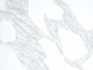 Калакатта Ла-Рошель 7900 Avant Quartz001_Granit.in.ua
