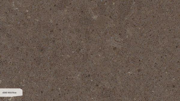 Wild Rice 4360 Caesarstone005_Granit.in.ua
